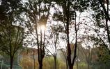 河南財經政法大學校園景