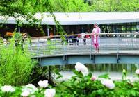春到龍口林苑