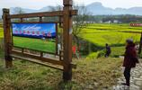 湖北宜昌:最美油菜花海,遊客如織;鄉村旅遊帶動農民致富