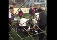 回憶球場猝死上海足球大佬:他一片真心給足球,一記耳光送陸俊