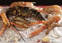 河蝦和海蝦的區別與做法?