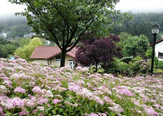 德國農村和國內農村的區別