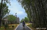 10張圖展示撫州新農村,70歲老農釀酒贏遊客青睞,計劃今年掙10萬