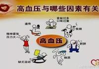 健康管理:高血壓調控管理