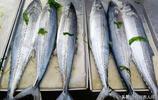青島鮮鮁魚價格趨穩 小梭子蟹充斥海鮮攤 最低價格10元一斤