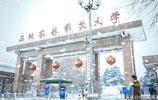 """中國最""""偏僻""""的985大學,不在北上廣,也不在省城"""