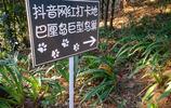 重慶人現在都流行去這個景點,拍張照要排隊10分鐘以上