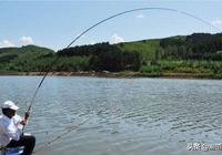 中國一級垂釣大師化紹新老師談釣魚浮漂,化老師的知識釣友必學!