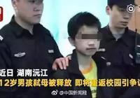 12歲弒母男孩被帶離原生活環境 由多方教育管束