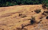被列為世界自然遺產的黃龍究竟美在哪裡?看完這6張圖就明白了