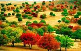 美麗的科爾沁大草原旅遊