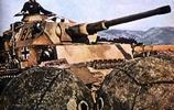 戰術軍事 二戰坦克彩照 有虎式坦克 謝爾曼坦克