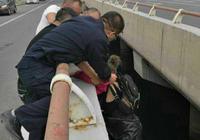 長春林園街道辦事處三名工作人員英勇救下輕生女子
