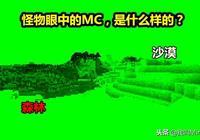 我的世界:5張MC生物視角圖,小萌新都看懵了!你能認出來幾個?