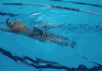 中游體育:初學者自學蛙泳需要勤練這項練習