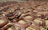 中國有一種肉,九成人卻不識貨,營養不輸牛羊肉,好吃到流口水