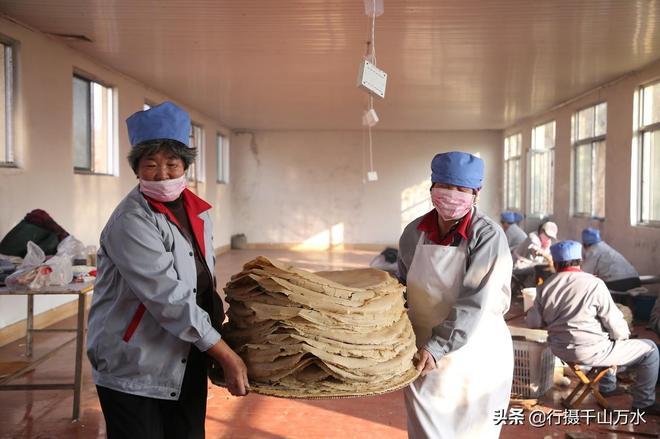日照農村大媽在煎餅加工廠手工攤煎餅,每天加工500斤供不應求