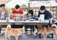 武大靖加盟《我家那小子2》,運動員頻繁參加綜藝節目是為何?