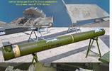 世界上第一種將攔截中低空巡航導彈納入設計思想中的防空導彈