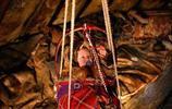 實拍居住在北極圈的捏捏次人,看他們如何與自然頑強搏鬥
