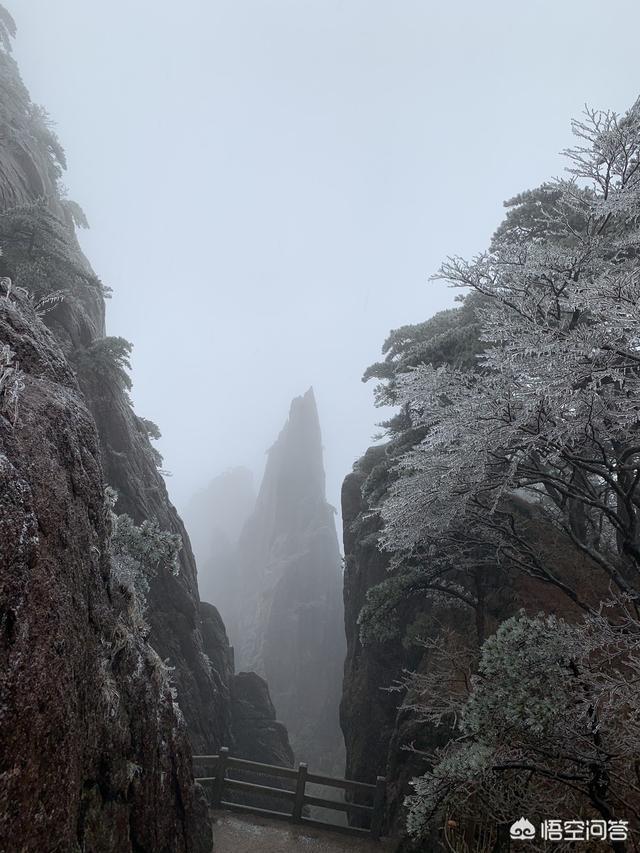 你遊過黃山嗎?求黃山美景照片,圖片?