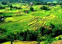 重慶古鎮,中國第一