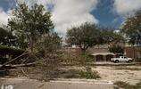 """颶風""""伊爾瑪""""過後,美國佛羅里達依舊浪漫"""