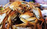 想吃到最肥美的螃蟹只會挑公母?這還差的太遠!教你最牛選蟹方法