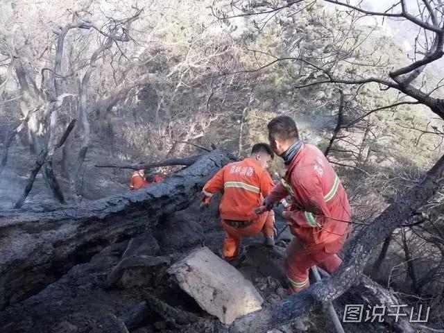 致敬在山火中所有保衛千山的勇士們!