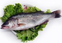 鱸魚怎麼做好吃,有什麼簡單又好吃的做法嗎?清蒸鱸魚做起來麻煩嗎?