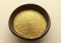 食谷鳥和雜食鳥的食物(蛋米的各種做法)