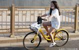 共享單車風靡京城 實拍騎共享單車下班的民眾 你喜歡哪種車?