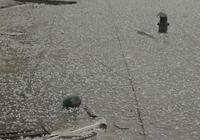 銀川暴雨+冰雹