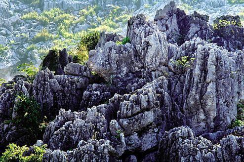 贛州瑞金雲石山