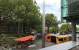 遊玩圖集新西蘭奧克蘭大學旅遊遊記 新西蘭最著名的大學
