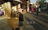 生命如臘梅芬芳,74歲賣花阿婆每天30公里徒步奔波,月入1萬