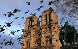 """巴黎聖母院不同角度下的""""美"""",這場火災成因到底是什麼?"""