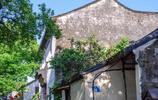 清晨遊蘇州同裡古鎮 斑駁的牆,青石的磚 見證過繁華喧囂,也經歷著歲月滄桑
