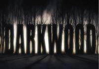 生存恐怖遊戲《陰暗森林》圖文全攻略,系統教程及全任務流程!