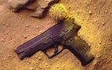 軍事組圖 極品世界名槍,軍迷必藏