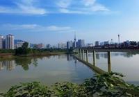 """陝西最""""河南""""的一座城市,滿城都是河南人,被譽為""""小河南""""!"""