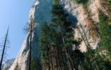 旅行小札 遊美國優勝美地國家公園 有太多值得拍照留念的角度啦