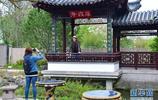 """世界園林巡禮——走進德國曼海姆""""多景園"""""""