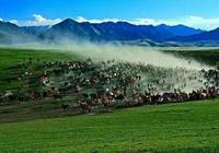 亞洲最大的馬場—山丹軍馬場