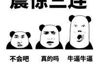 上海浦東搶方向盤乘客被取消落戶,檢察官詳解懲處依據, 你怎麼看?