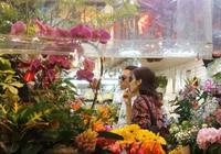 洪欣張丹峰牽手逛花店:活不出氣場的女人,勸你不要婚姻裡當聖母