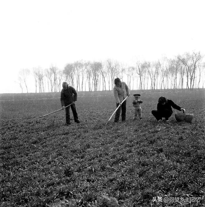 """影像記錄40年前豫西盧氏農村實行""""大包乾""""之後十年間農民的身影"""