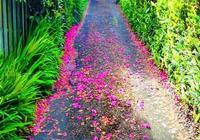 人生旅途中艱難的路,是不是等同於一條向上的路?