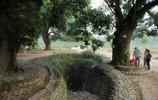 永嘉楠溪江畔的村莊