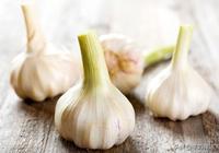 大蒜髮芽了有沒有毒?大蒜還有這些養生作用
